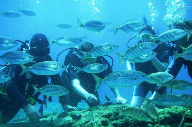 Rhodes scuba diving experience for beginners in rhodes 201822