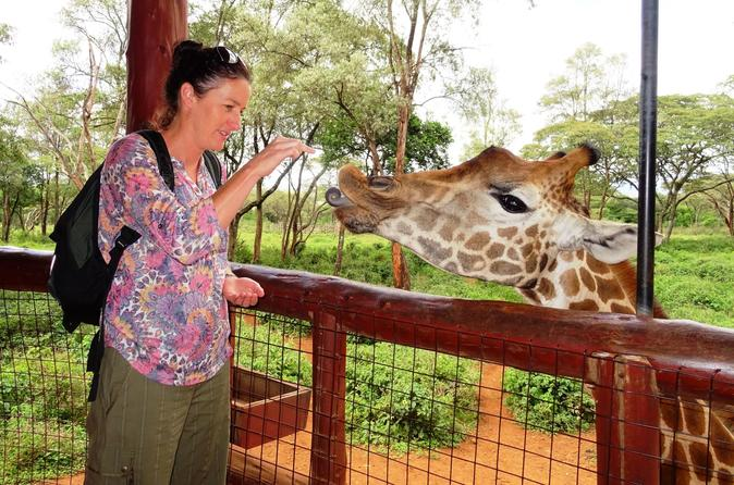 Nairobi Tour to David Sheldrick , Giraffe Centre  & Soverior Shopping