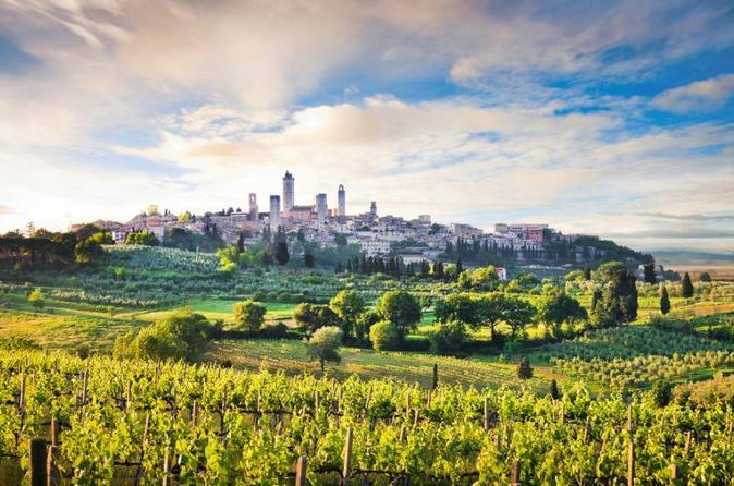 Excursão de degustação de vinhos por Siena, San Gimignano, Monteriggioni e Chianti partindo de Florença