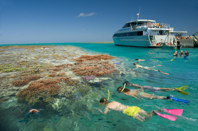 3 day southern great barrier reef tour including lady musgrave island in brisbane 152213