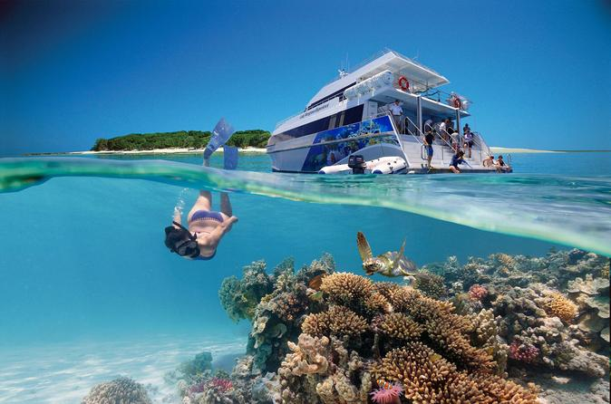 3 Tages Tour Zum Great Barrier Reef Einschlie Lich Lady Musgrave Island 2018 Brisbane