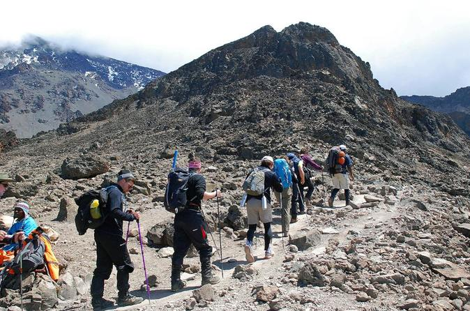 7 Days Mountain Climbing Kilimanjaro