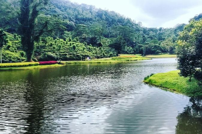 Half-Day Tour To Seethawaka Botanical Garden From Colombo