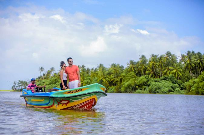 Negombo Transit Mangrove Boat Ride Tour From Airport