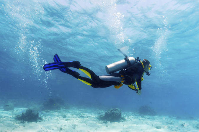 Small-Group Muscat Scuba Diving for Certified Divers