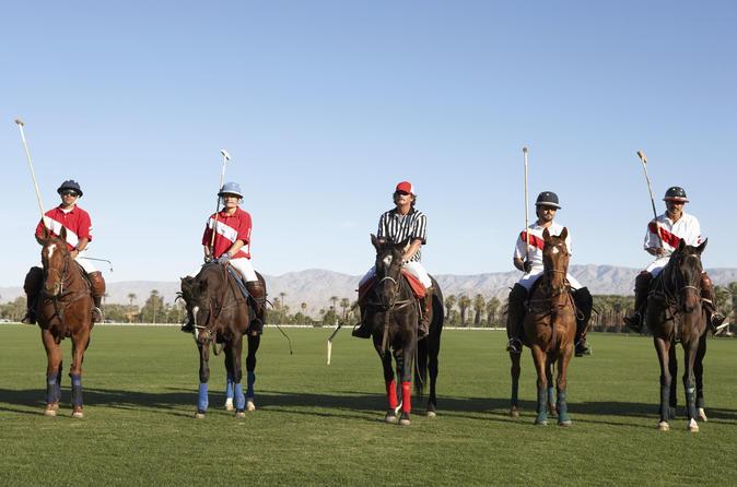Viagem de um dia com aula e jogo de polo saindo de Buenos Aires