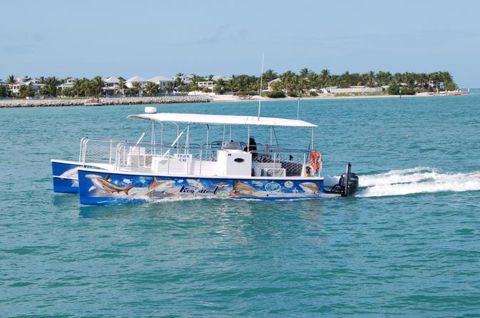 Key west shark and wildlife catamaran tour in key west 157264