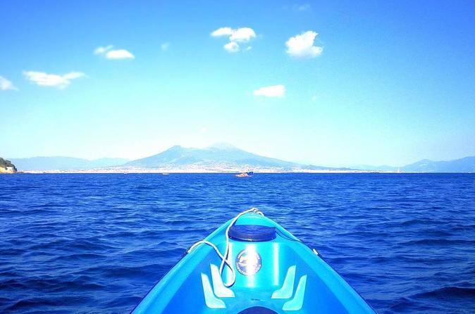 Wild Naples Kayak Experience