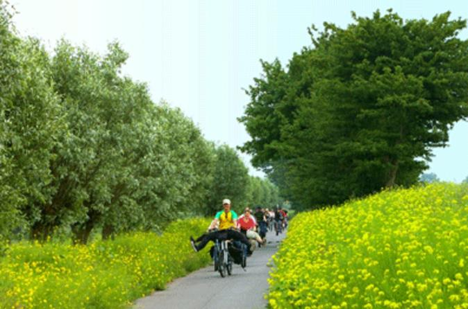 Amsterdam countryside bike tour including cheese tasting and clog in amsterdam 168794