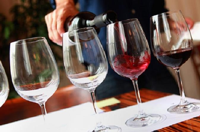 Amarone Wine Trail Tour From Verona