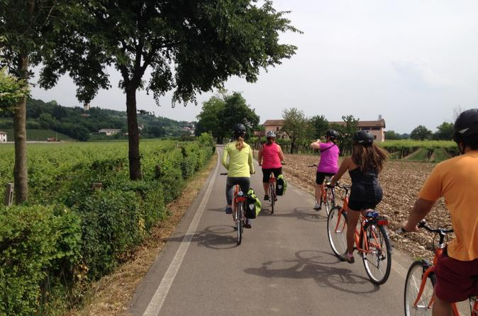 Verona and countryside easy bike tour in verona 256732
