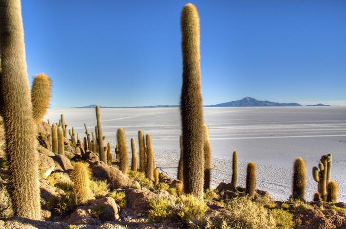 Uyuni salt flats day trip by air from la paz in la paz 166454