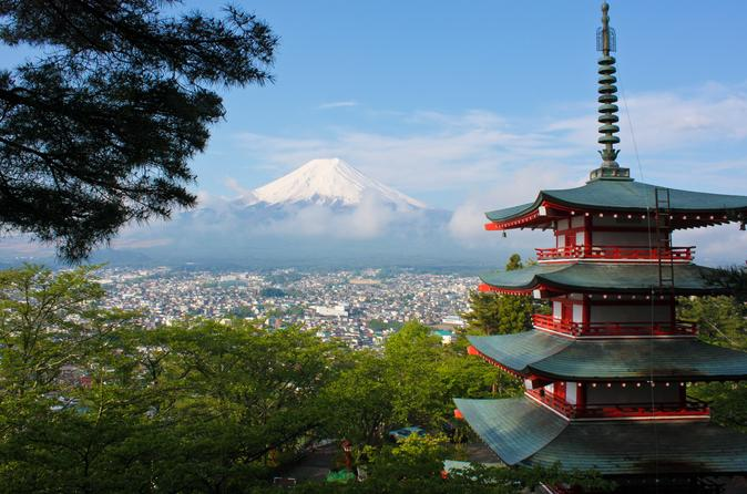 1 Day Private Mt Fuji Tour (Charter) - English Speaking Driver