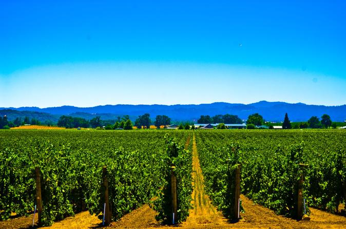 El dorado wine country tour from south lake tahoe in lake tahoe 157891