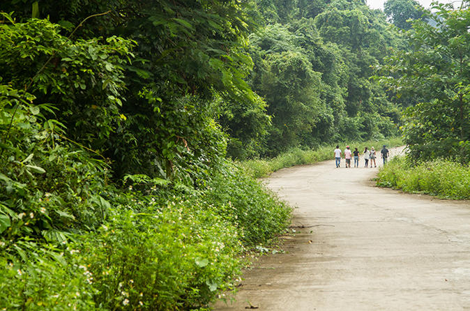 Day Trip to Cuc Phuong National Park from Hanoi Vietnam, Asia