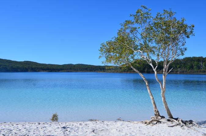 Small group fraser island 4wd tour from hervey bay including indian in fraser island 164637