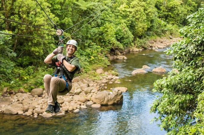 Canopy y Tirolesa Tour Plus