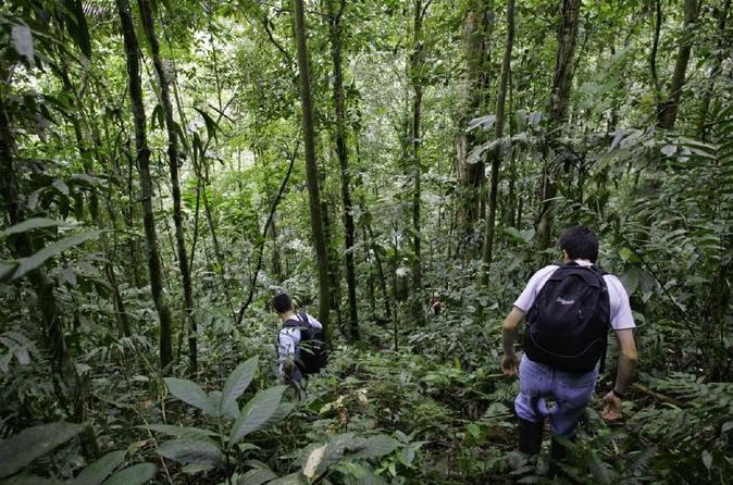 Jungle Trekking Tour Plus