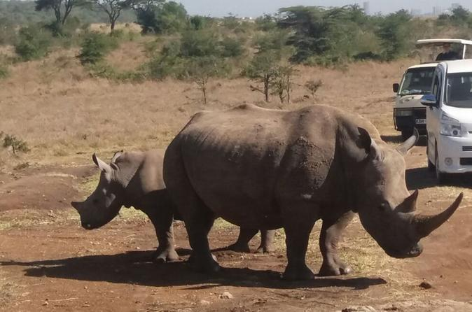 1Full Day Nairobi National Park, Elephant Orphanage & Giraffe Center Tour  from Nairobi