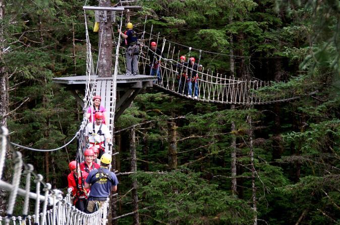 Ketchikan shore excursion rainforest zipline adventure in ketchikan 170211