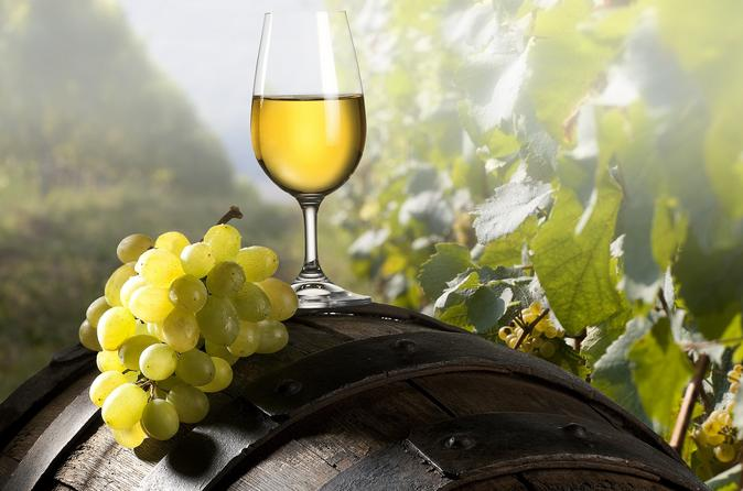 Private Shore Excursion: Ancient Ephesus And Wine Tasting Tour From Kusadasi Included Lunch