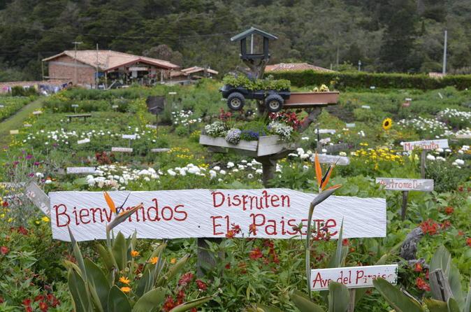FLOWER FARM & ARVÍ PARK TOUR