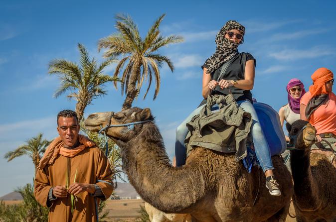 Passeio de camelo no deserto e em Palm Grove saindo de Marraquexe incluindo Chá marroquino e lanche