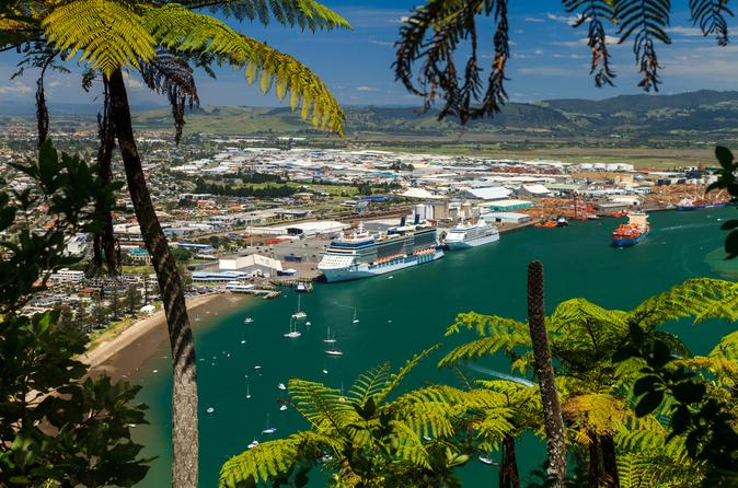 Tauranga Shore Excursion: Mt Drury and Moturiki Island Walking Tour including Mount Hot Pools Admission