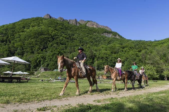Sapporo horseback riding tour in sapporo 199363