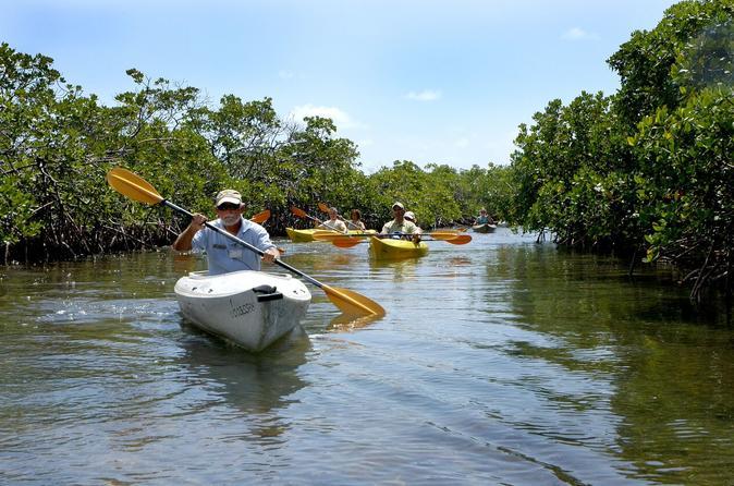 Kayak Only