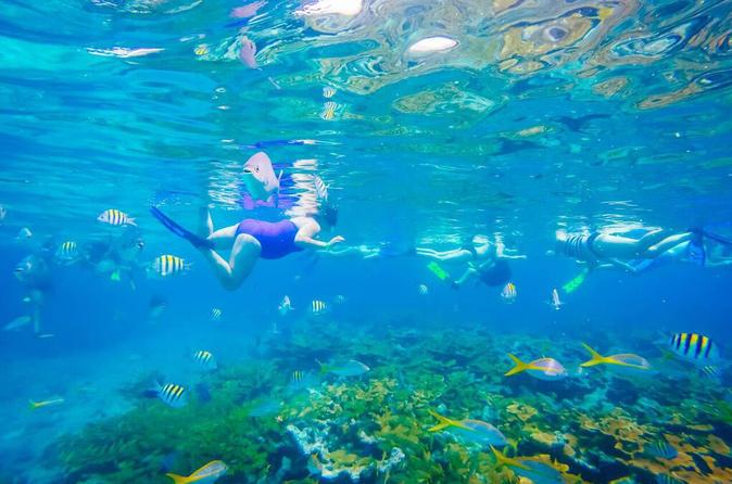 Reef Snorkel & Shopping