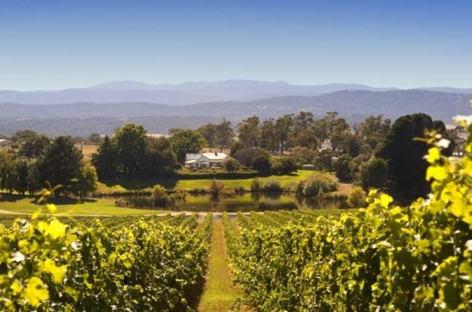 Josef chromy wines winery tour including tasting and lunch in launceston 162059