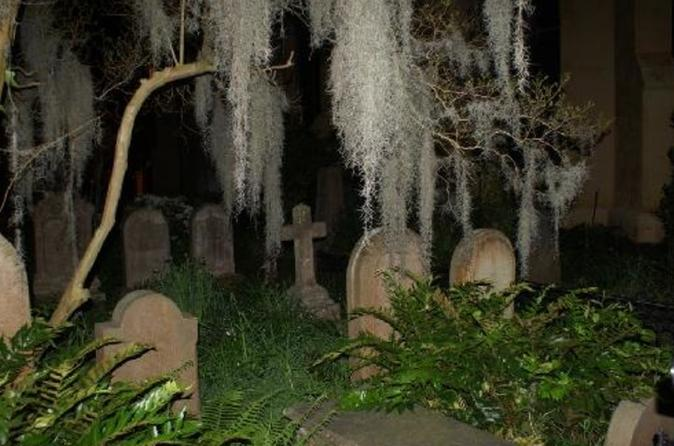 Charleston Haunted History Horse and Carriage Tour with Old South Carriages