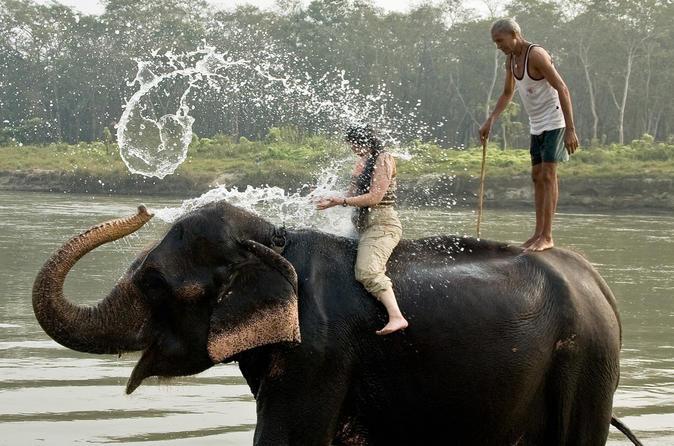 Refreshing 2N 3D Chitwan National Park Activities - Kathmandu