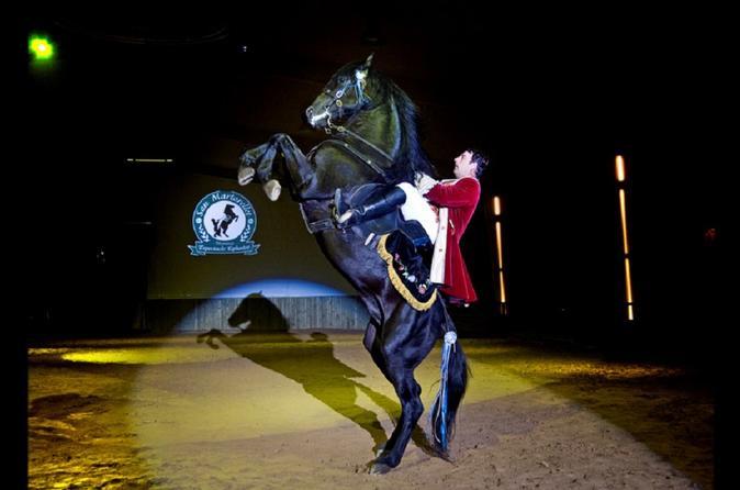 SOMNI With Transfer Equestrian Show - Minorca