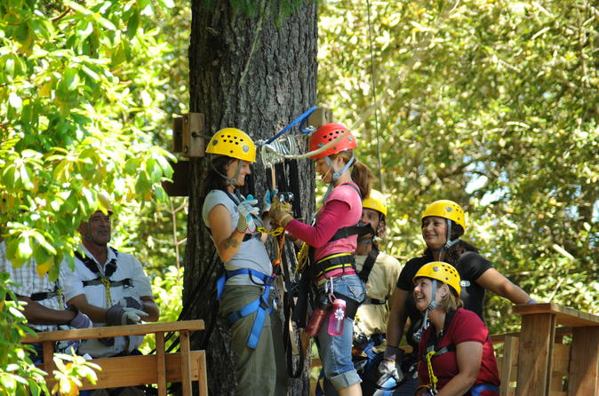 Ziplining Adventure in Sonoma