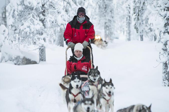 Lapland Husky Sled Ride fra Levi