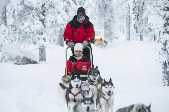 Lapland Husky Sled Ride from Saariselkä