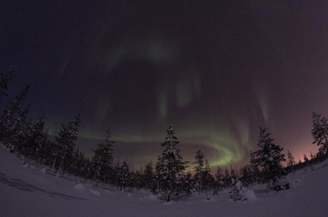 Lapland Northern Lights Safari by Reindeer Sleigh from Saariselkä