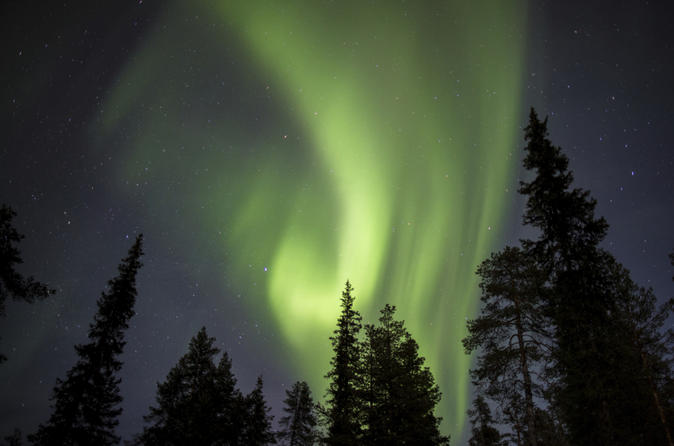 Lapland Northern Lights Safari by Snowmobile from Saariselkä