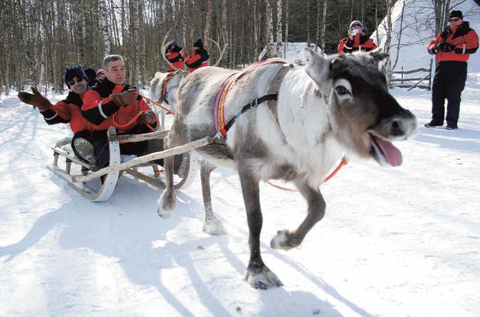 Reindeer Ride — VisitFinland.com