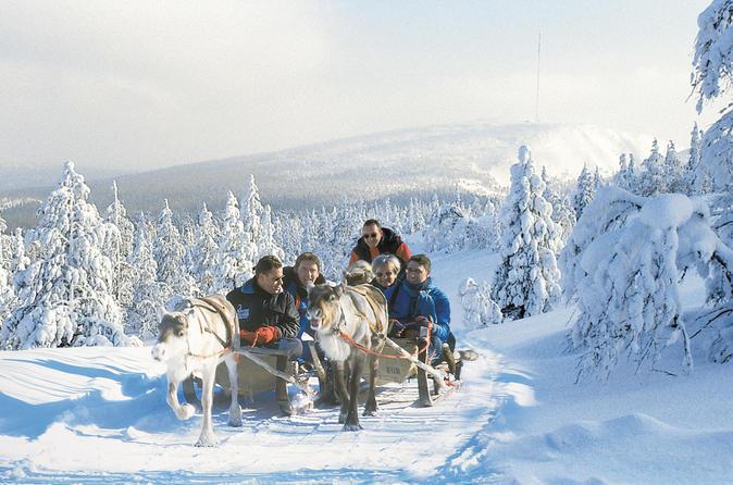 Lapland Snowmobile Safari To A Reindeer Farm From Saariselkä Including Reindeer Sleigh Ride