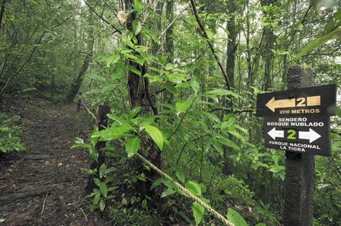 Hike In La Tigra National Park, Full-Day Tour - Tegucigalpa