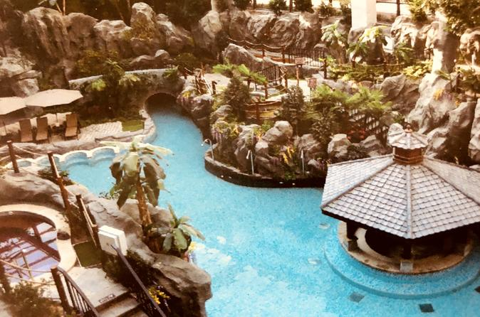 Private Day Trip: Hot Spring Spa with Bullet Train Experience