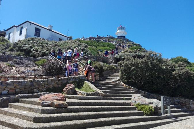 HALF DAY CPT PENINSULA TOUR DRIVE - Cape Town