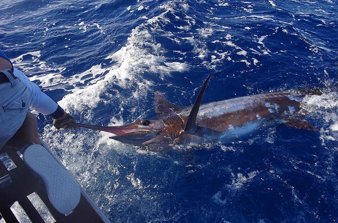 Azores, São Miguel, Big Game Fishing Full Day- Oceantur