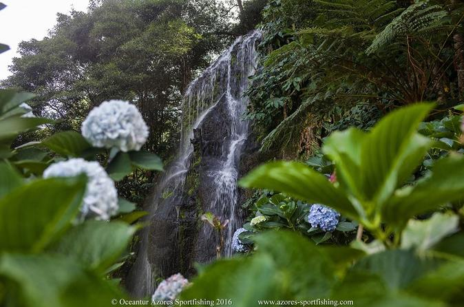 Nordeste, São Miguel, Azores, MiniVan Tour HD - Ponta Delgada