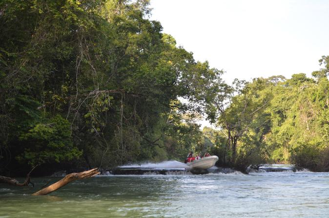 Montes Azules Biosphere Reserve Day Trip from Palenque Including Boat Ride