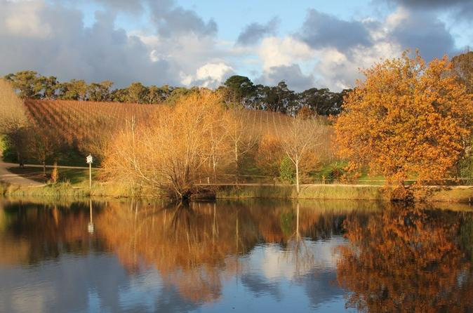 Small-Group Fleurieu Peninsula Food and Wine Experience by 4WD Including 4-Course Lunch