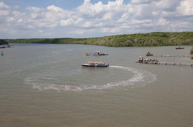 Can Gio Biosphere Reserve Tour by Luxury Speed Boat